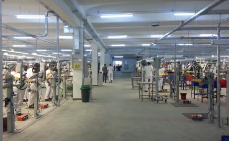 Fabricii 7A