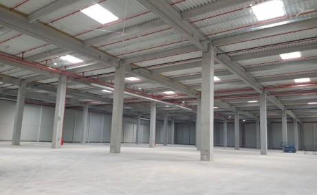 MLP Chitila Bucuresti inchiriere parcuri logistice Bucuresti nord-vest vedere spatiu interior