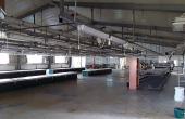 Hala industriala de inchiriat in Arad Vest, imagine interor hala