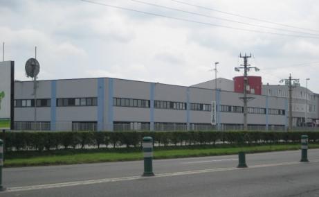 Geox Timisoara