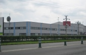 Geox Timisoara - Ocupat 100%